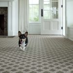 Patterned Carpet | Perfect For Pets!