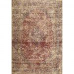 """Traditional 2798 area rug - 5'0"""" by 7'0"""" - 5' x 8'/Surplus, Multicolor"""